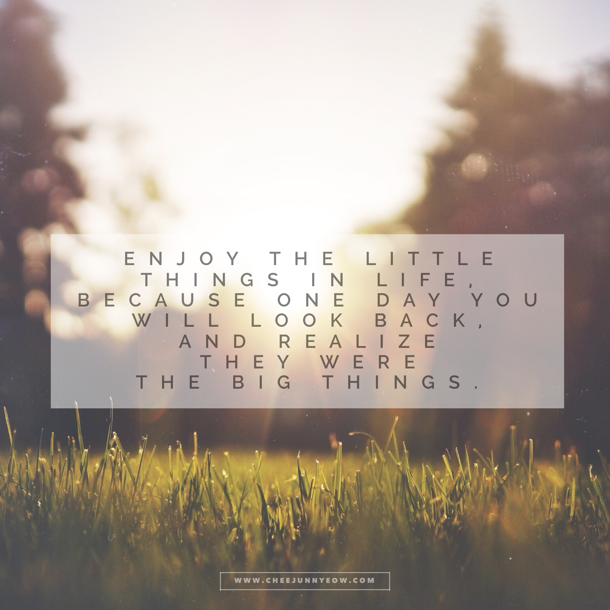 enjoy the little things in life because one day you will look back and realize they were the big things