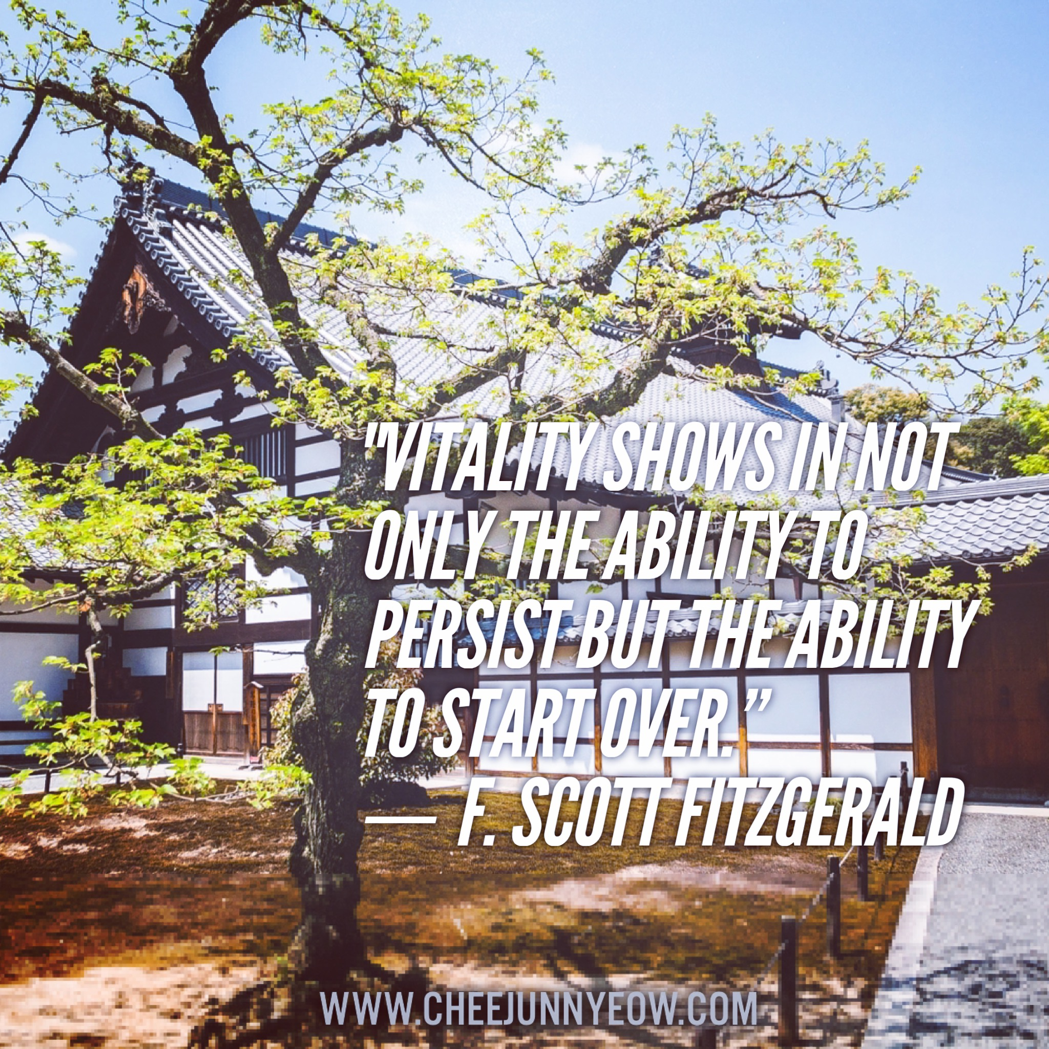 vitality shows in not only the ability to persist but the ability to start over