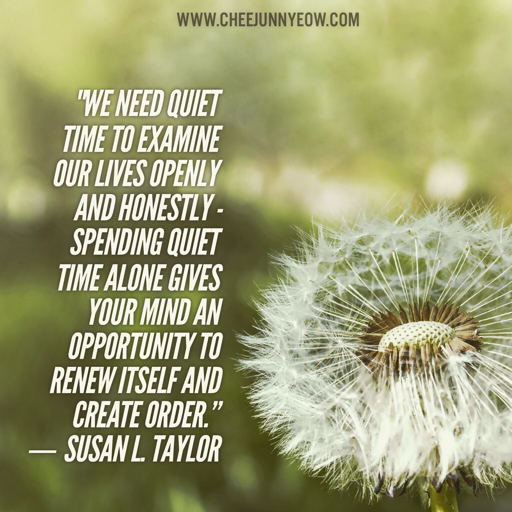 we need quiet time to examine our lives openly and honestly. spending quiet time alone gives your mind an opportunity to renew itself and create order